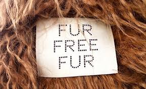 The Fight Against Fur!